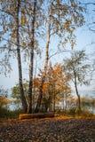 Russian autumn Royalty Free Stock Photos