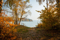 Russian autumn. Photo taken in forest near Moscow Stock Photo