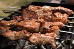 Russian barbecue Stock Images
