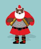 Russian bear in guise of snata Claus. Wild animal in Christmas a Royalty Free Stock Image