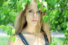 Russian beauty. Portrait of the young beautiful girl on a background of leaves of a birch Royalty Free Stock Photo