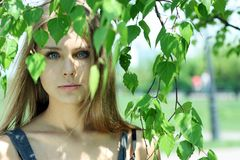 Russian beauty. Portrait of the young beautiful girl on a background of leaves of a birch Royalty Free Stock Images