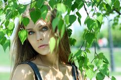 Russian beauty. Portrait of the young beautiful girl on a background of leaves of a birch Royalty Free Stock Photography