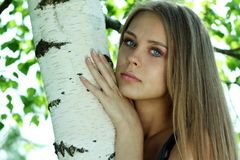 Russian beauty. Portrait of the young beautiful girl on a background of leaves of a birch Stock Image