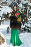 Russian beauty is in the winter forest. royalty free stock images