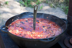 Russian borscht soup Stock Photos