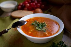 Russian cabbage soup shchi. Delisious cabbage soup popular in Russia shchi Royalty Free Stock Image