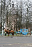 Russian carriage Royalty Free Stock Photos