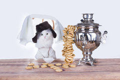 Russian cat drinking traditional tea Royalty Free Stock Photography