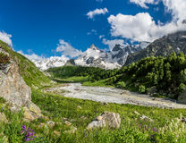 Russian Caucasus mountains: Adyl-Su gorge in sunny summer day. Beautiful green mountain Adyl-Su gorge with a small rough stream in sunny summer day. Russian Royalty Free Stock Photo