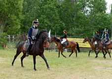 Russian cavalry in the Borodino field. Royalty Free Stock Photo