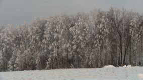 Russian cemetery in winter. Under snow in December stock video footage