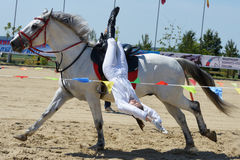 Russian championship in trick riding Royalty Free Stock Images