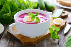 Russian cold beetroot soup with cucumbers Royalty Free Stock Image
