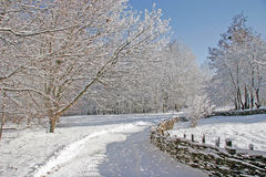 Russian cold winter sun. The road runs along the snow-covered wi. Cker fence Stock Photography