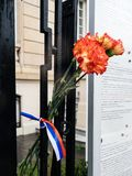 Russian Consulate Embassy mourning of victims of fire at Zimnyay. Carnation flower with Russian Flag band at Russian Consulate Embassy mourning of victims of Stock Image
