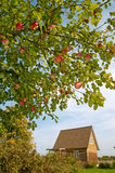 A russian cottage. Wooden cottage in the countryside and an apple tree Stock Photo