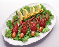 Russian crayfishes with lemon Royalty Free Stock Photos
