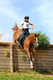Russian Cross-Country, horseback jumping Royalty Free Stock Images