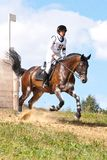 Russian Cross-Country, horsewoman gallop stock photo