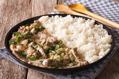 Russian cuisine: beef stroganoff with rice close-up on a plate. Royalty Free Stock Image