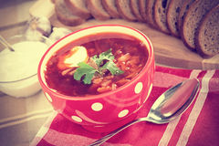 Russian cuisine. Borsch Royalty Free Stock Photos