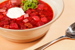 Russian cuisine. Borscht Royalty Free Stock Image