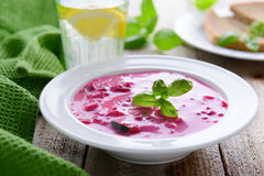 Russian cuisine - cold soup from beetrot and cucumbers Royalty Free Stock Image