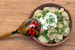 Russian cuisine: dumplings with sour cream and dill. Stock Photography