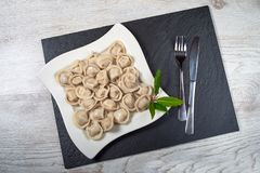 Russian cuisine hot meat dumplings served with herbs Royalty Free Stock Images