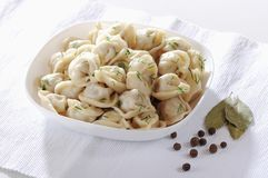 Russian cuisine hot meat dumplings served with herbs Stock Image