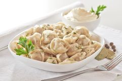 Russian cuisine hot meat dumplings served with herbs Royalty Free Stock Photo