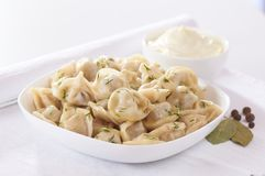 Russian cuisine hot meat dumplings served with herbs Royalty Free Stock Photos