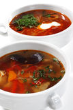 Russian Cuisine - Solyanka and Fish Soup. Russian and Ukrainian Cuisine - Solyanka and Fish Soup is a Thicks, Spices and Sours Soups. Isolated on White Royalty Free Stock Images