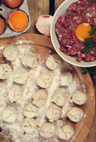 Russian culture. Russian traditional pelmeni with meat stock photos