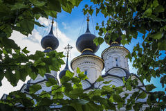 Russian Domes Stock Images