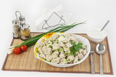 Russian dumplings with herbs and onions. stock images