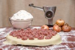Russian dumplings. The process of cooking. Pelmeni Royalty Free Stock Image