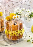Russian Easter cake Kulich with raisin and dried cherry Royalty Free Stock Photography