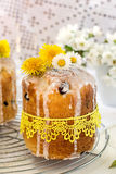 Russian Easter cake Kulich with raisin and dried cherry Stock Images
