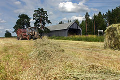 Russian farmland, while hay, tractor round baler works in hayfie Stock Photos