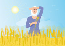Russian field. Smiling russian girl in a white scarf with ears of wheat in the hand is worth a wheat field on a background of blue sky, sun and flying birds Royalty Free Stock Image