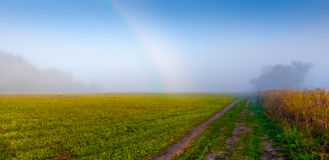 Russian field and country road Stock Photo