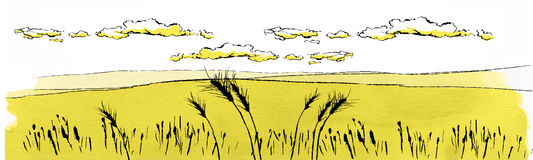Russian field illustration. Russian wheat field landscape illustration vector illustration
