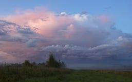 Russian field, Novgorod region ,Russia Stock Photography