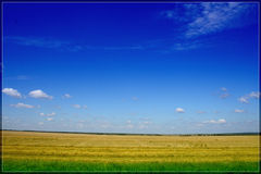 Russian fields Royalty Free Stock Photography