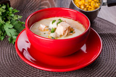 Russian fish soup stock photography