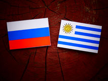 Russian flag with Uruguaian flag on a tree stump isolated. Russian flag with Uruguaian flag on a tree stump Royalty Free Stock Photo