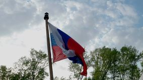 Russian flag waving in the wind over blue sky and. Top of trees stock video footage