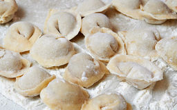 Russian food pelmeni Stock Photos